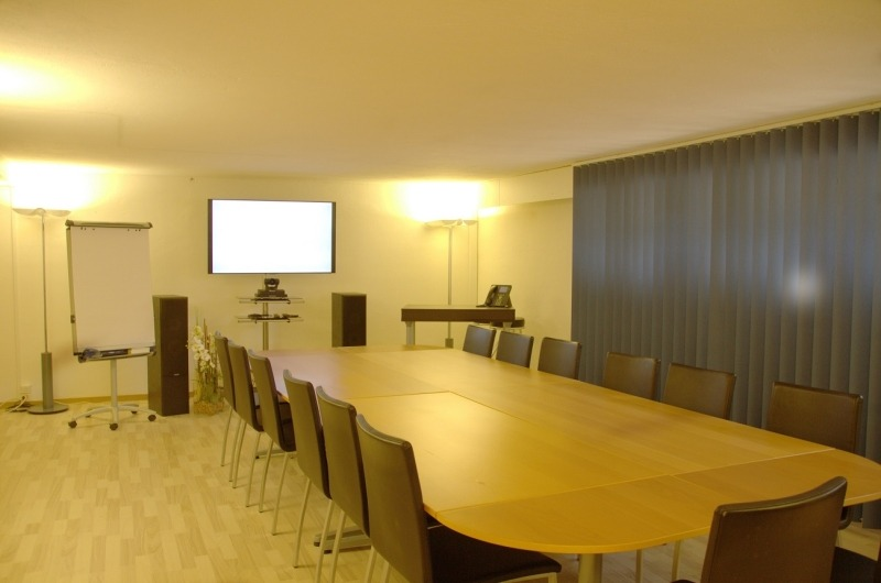 Big conference room right at the airport - 2